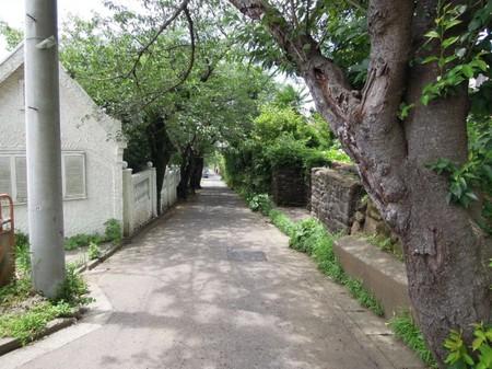 Kamakurayama15_2